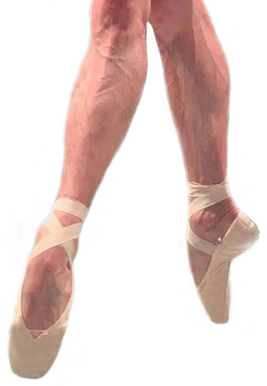 Rudolf Male Pointe Shoes